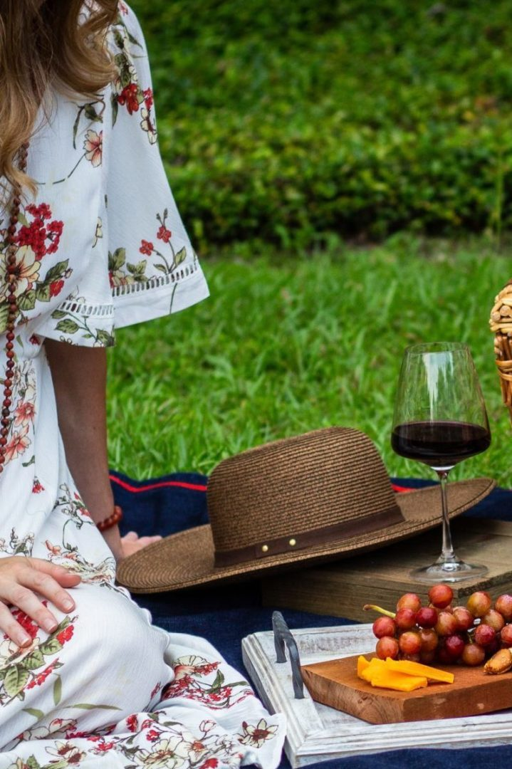 Wine Tasting and Tours_Le-Lase_pic-nic-in-vineyards